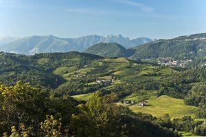 Il Parco di Montevecchia organizza un centro estivo per bambini