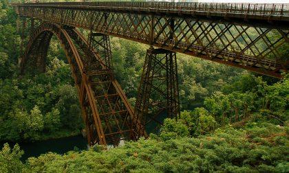 """Ponte di Paderno, Butti: """"Non c'è traccia della pur vaga idea di un percorso alternativo al ponte"""""""