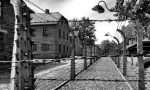 Giorno della memoria: le iniziative in provincia di Lecco