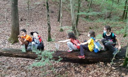 Parco  di Montevecchia, è iniziato il centro estivo per bambini FOTO