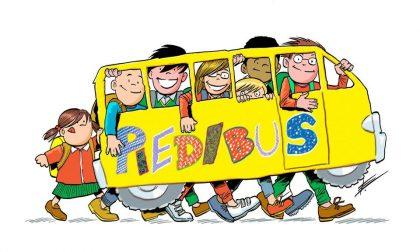 Cassago: cercasi volontari per il servizio Piedibus