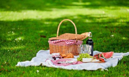 Merate: Progetto Famiglie organizza un picnic al parco con animazione