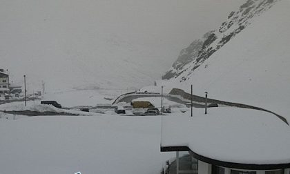 Nevicata d'agosto: chiusa la Statale dello Stelvio FOTO