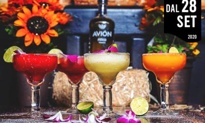 Vuoi diventare barista: con Confcommercio Lecco parte il Corso Barman livello base