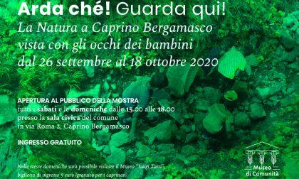 Il museo di Caprino Bergamasco riapre le porte al pubblico