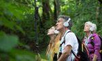 Vita degli alberi, domenica 18 ottobre due spettacoli itineranti