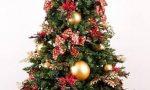 Cisano Bergamasco: lanciato un concorso per l'albero di Natale più bello