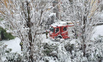 La neve è arrivata, grossi disagi: interventi dei Vigili del fuoco, traffico in tilt LE FOTO
