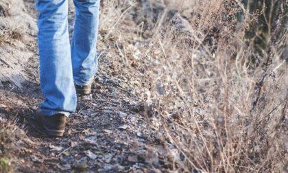 Forrest Gump comasco litiga con la moglie e fa 450 chilometri a piedi