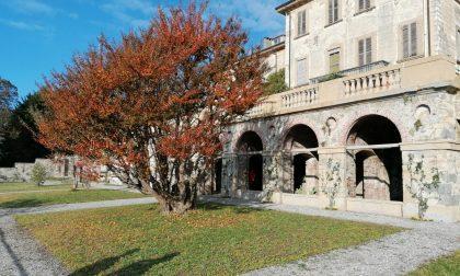 """""""Vedere l'invisibile"""": un progetto per recuperare la storia dei giardini di Villa Greppi e Villa Reale di Monza"""