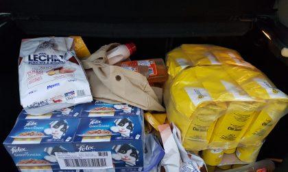 Una lotteria per raccogliere pappe e materiale per i piccoli amici dell'uomo FOTO