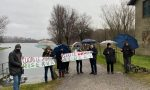 Sartirana: sit-in del Comitato Ambiente contro il taglio degli alberi