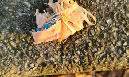 Trovate altre polpette avvelenate: l'incubo dei cani non si ferma