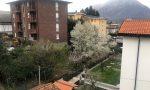 Risveglio particolare.... fiocchi di neve su Lecco il 19 marzo