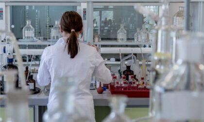 Covid, il virus viaggia tra cervello e polmone lungo il nervo vago: la ricerca
