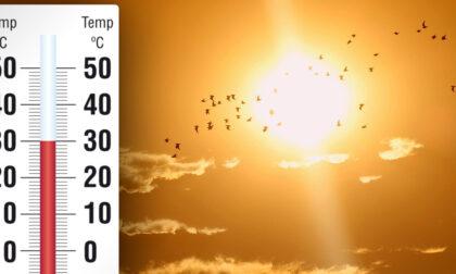 L'estate prova a decollare nei prossimi giorni con picchi fino a 30° | METEO