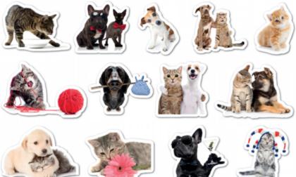 Da oggi originali stickers in regalo col Giornale di Merate