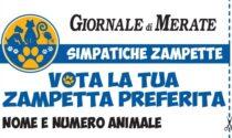 Simpatiche Zampette, sul Giornale di Merate il nuovo coupon per votare gli amici a quattro zampe