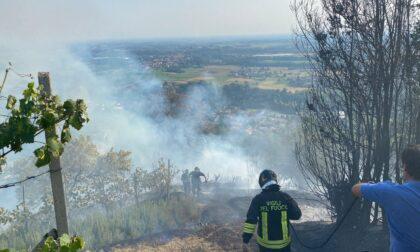 Vasto incendio sulla collina di Montevecchia